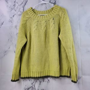 Aerie Chunky Crew Neck Long Sleeve Sweater